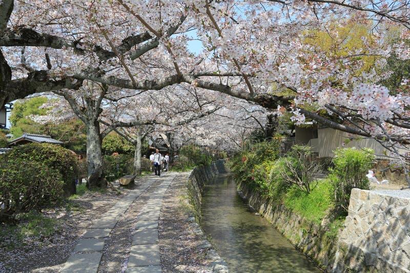 Kyoto, Japón en Philosopher& x27; paseo de s en la primavera fotos de archivo