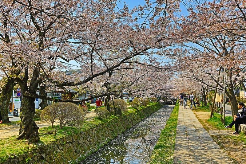 Kyoto, Japón en Philosopher& x27; paseo de s en la primavera foto de archivo libre de regalías