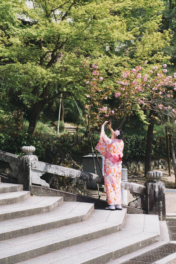 Kyoto, Japan - April 3, 2018: Jonge vrouw die traditionele Japanse Kimono in openbaar park dragen royalty-vrije stock foto's