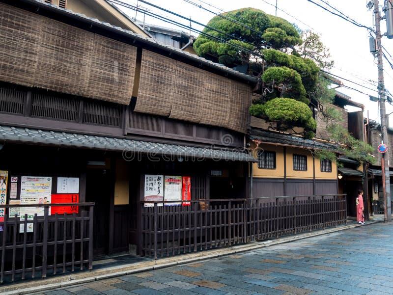 Geisha posing under a beautiful tree in a retro japanese style street at Gion Ward stock photo