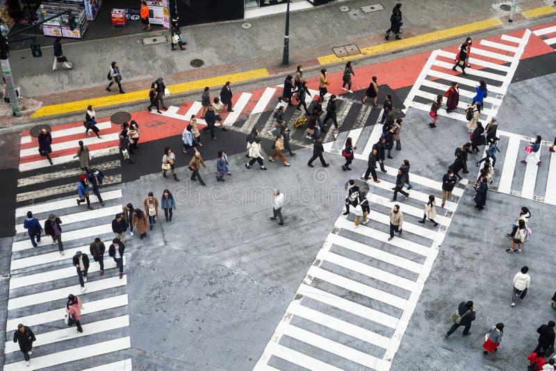 Kyoto Japan - Mars 12 2016: Japansk befolkning korsade vägen royaltyfri foto