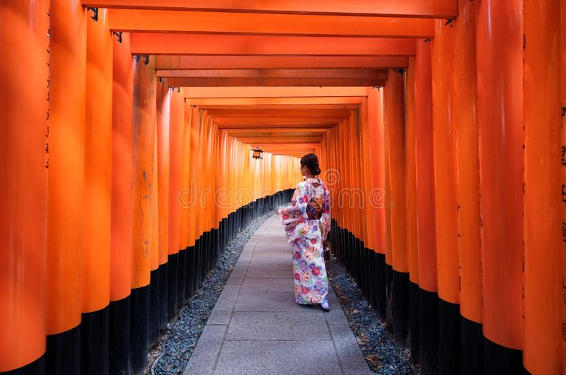 Kyoto, Japan - Nov 11 2017 : Japanese woman dressed kimono pose in red ancient wood torii gate at Fushimi Inari. Shrine stock image