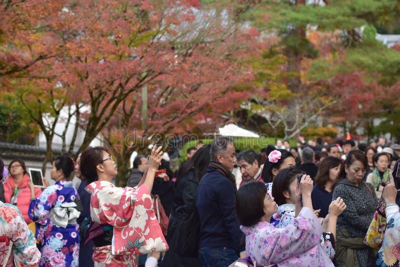KYOTO JAPAN - NOVEMBER 24: höstlövverk på den Eikando templet på Novem arkivbilder