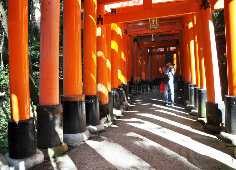 Download KYOTO, JAPAN - OCT 23 2012: A Man Takes Photos Of Torii Gates At Editorial Stock Photo - Image of kyoto, cultural: 29411348