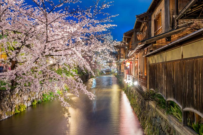 Kyoto, Japan at the Shirakawa River in the Gion District in Kyoto during the spring cherry blosson season royalty free stock photo