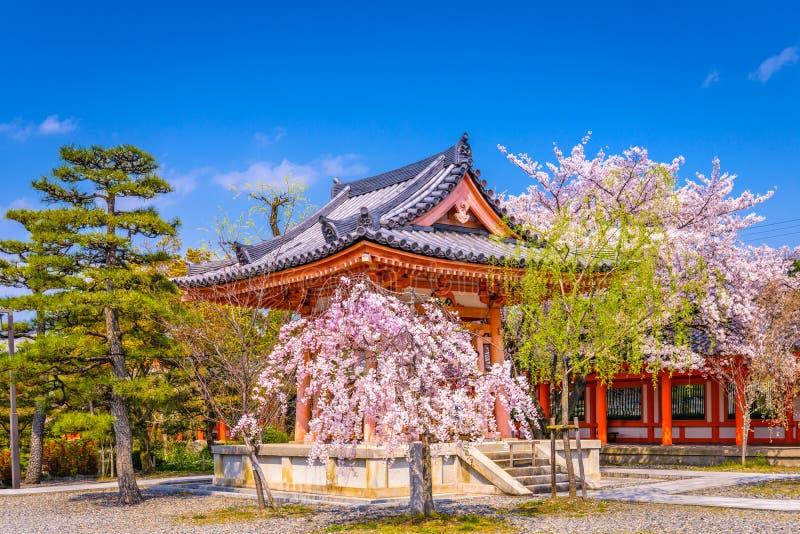 Kyoto Japan Spring. Kyoto, Japan spring flowers at Sanjusangendo Temple royalty free stock image