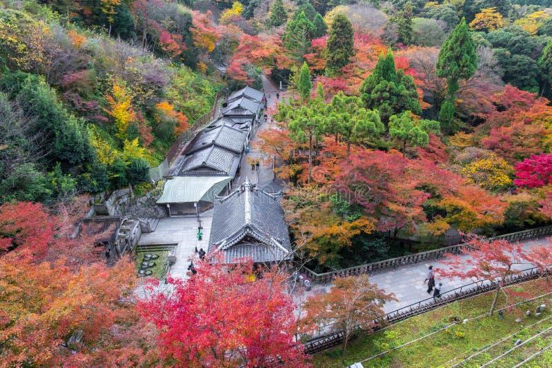 Kyoto, Japon - 25 novembre 2016 - le bel automne c de Momiji photographie stock libre de droits