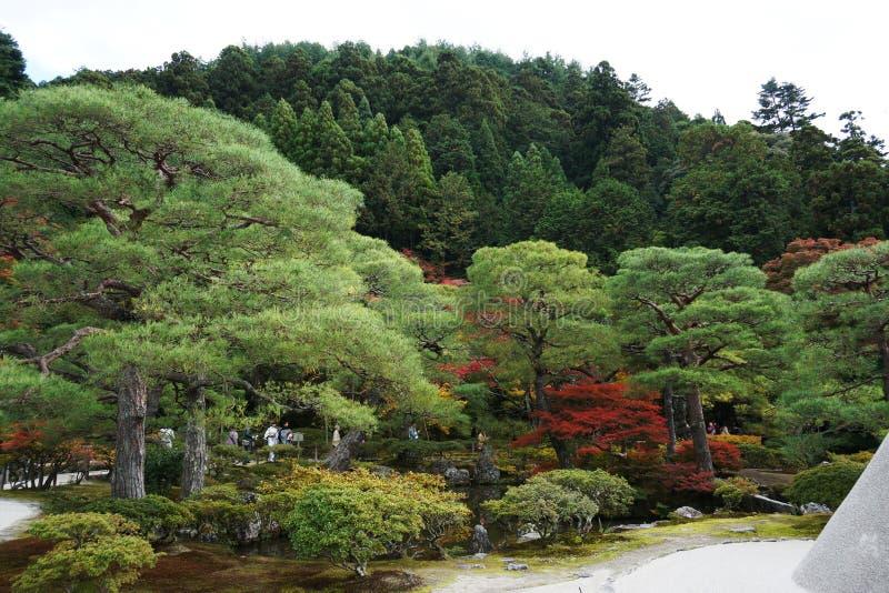 Kyoto-Landschaft stockbilder