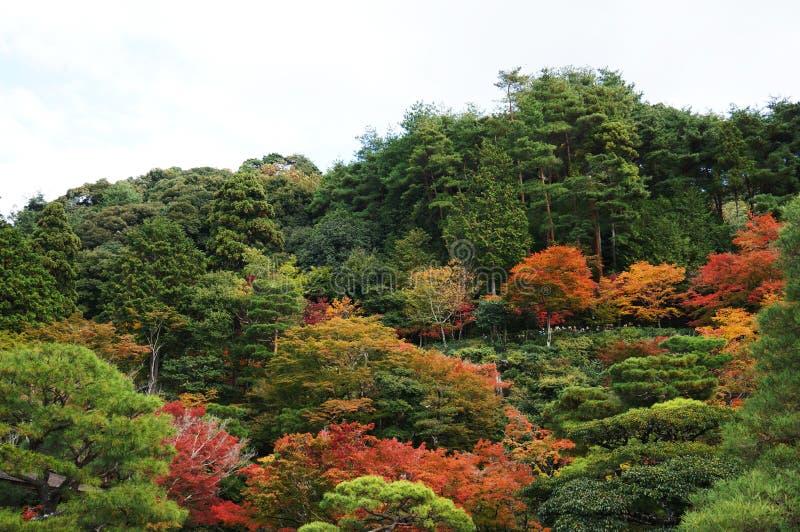 Kyoto-Landschaft lizenzfreies stockfoto