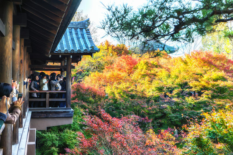 KYOTO - 28 Nov 2015: Tourists crowd to take pictures on a wooden stock image