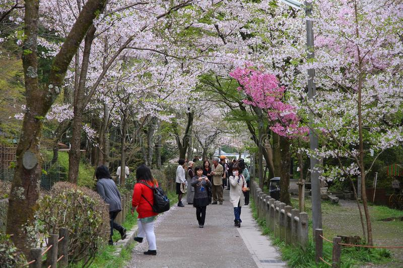 Kyoto people. KYOTO, JAPAN - APRIL 16, 2012: People visit Philosopher's Walk in Kyoto, Japan. Old Kyoto is a UNESCO World Heritage site and was visited by almost stock photography