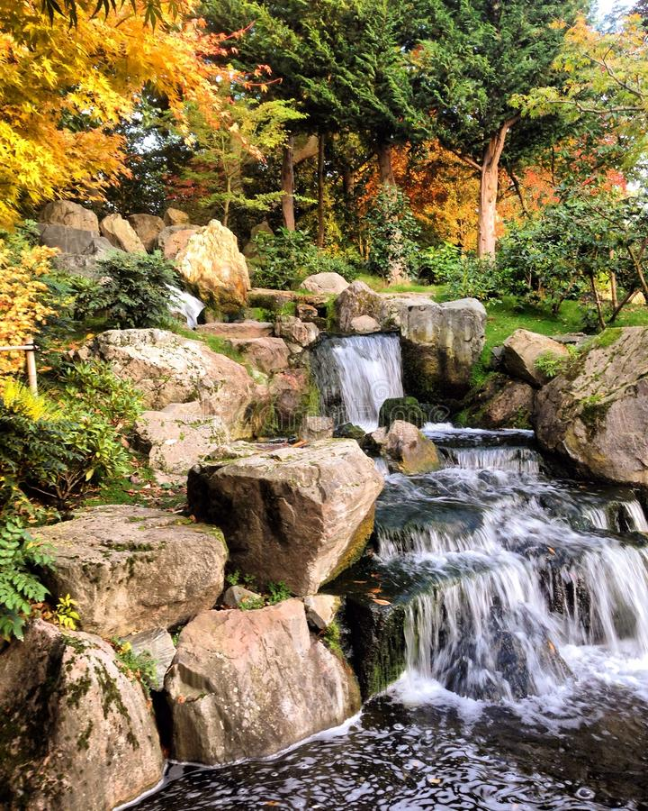 Kyoto trädgård royaltyfri fotografi
