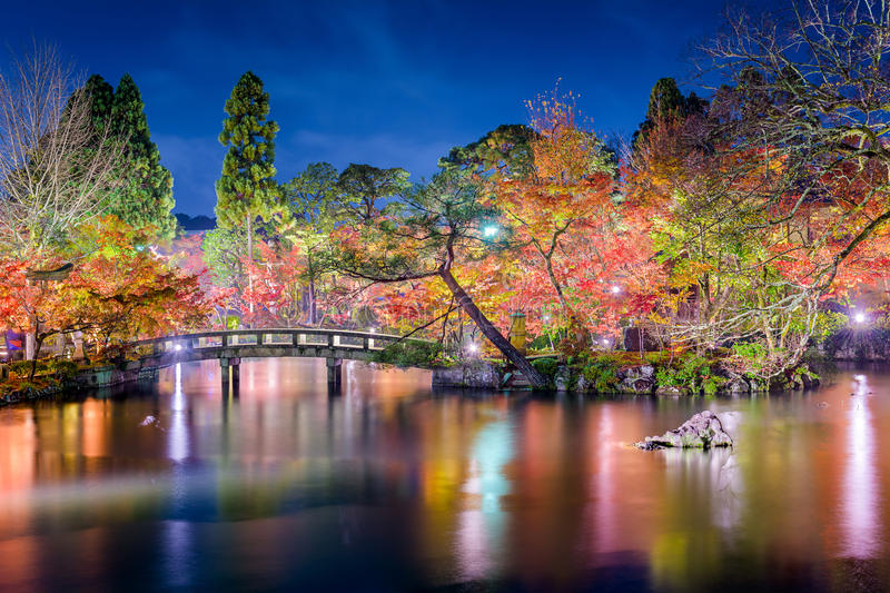 Kyoto trädgård Autumn Night royaltyfria bilder