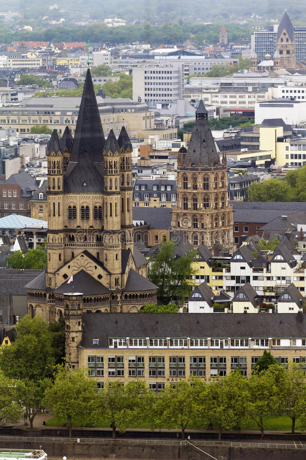Kyrka av St Martin och det historiska stadshuset i Cologne royaltyfria bilder