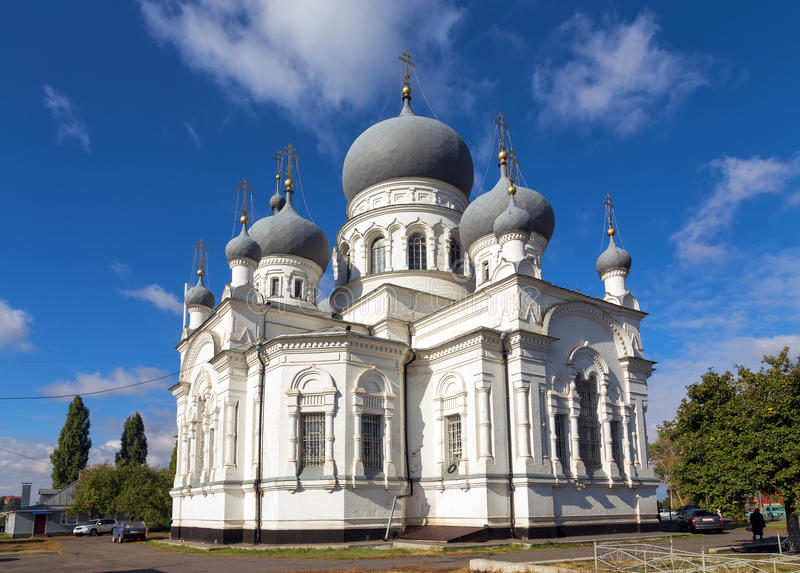 kyrklig nativity ankh Ryssland arkivfoton