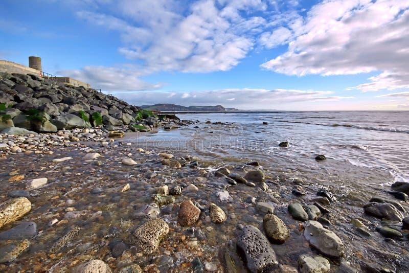 Kyrklig strand - Lyme Regis royaltyfri fotografi