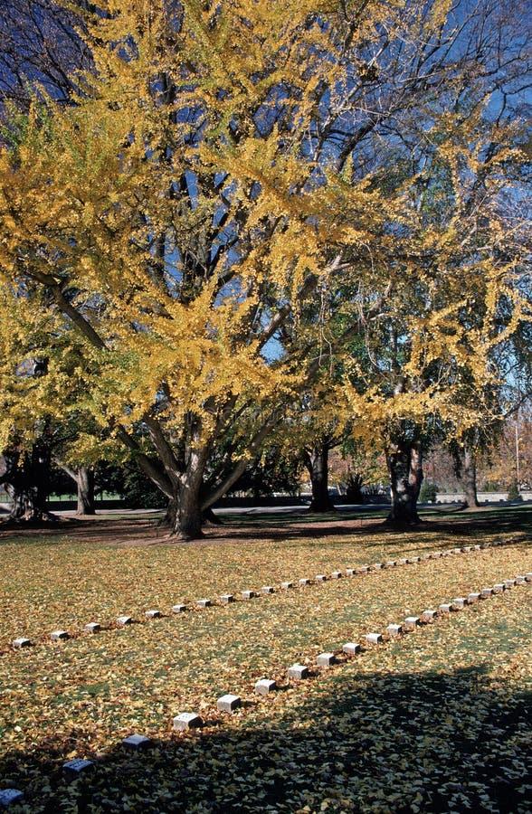 Kyrkogård på den Gettysburg inbördeskrigslagfältet royaltyfri fotografi
