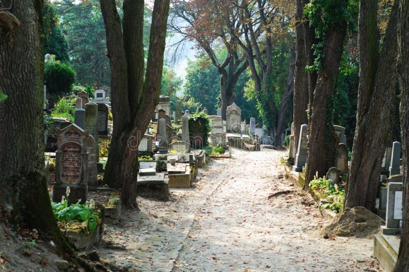 kyrkogårdbanaromanian arkivfoton