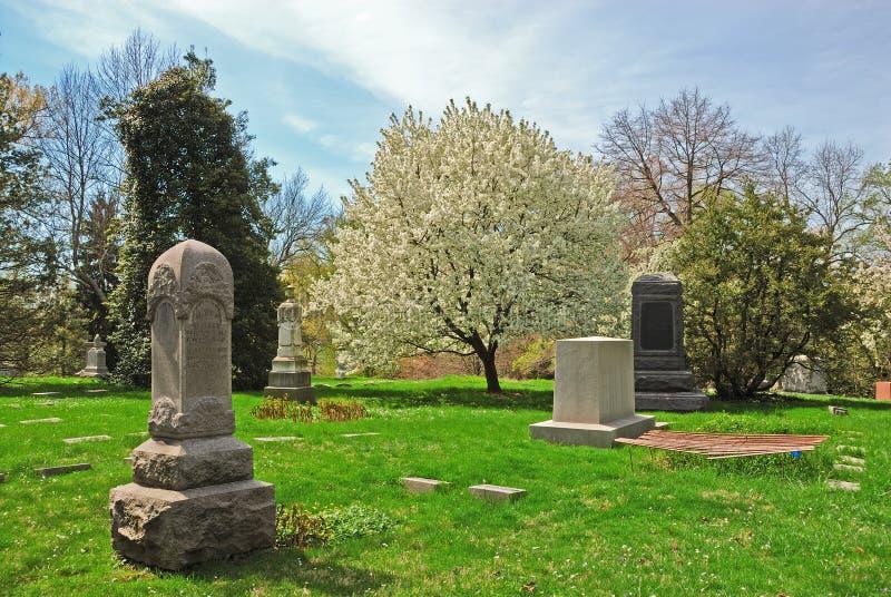 kyrkogårddungefjäder royaltyfri bild