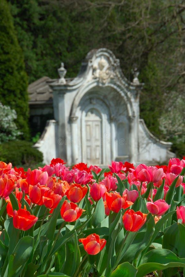 kyrkogårddungefjäder royaltyfria foton