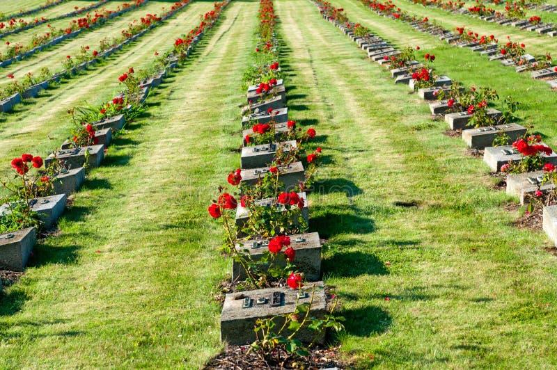 kyrkogårdnationalterezin royaltyfri foto