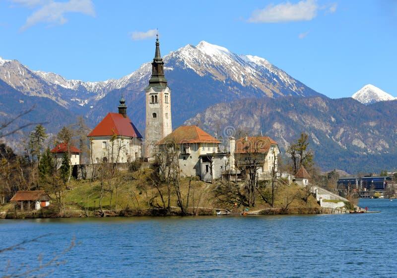 Kyrktaga på ön av sjön som BLÖDAS i SLOVENIEN och den snöig mounen royaltyfri foto