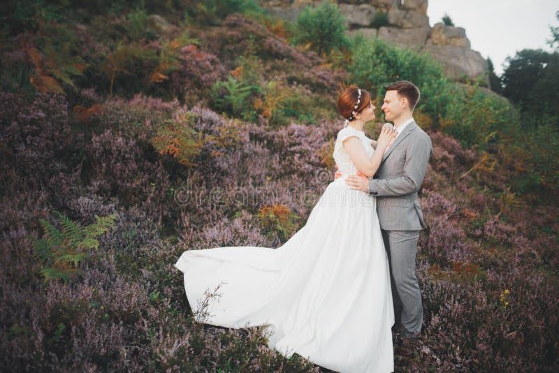Kyssande brölloppar som blir över härligt landskap arkivbild
