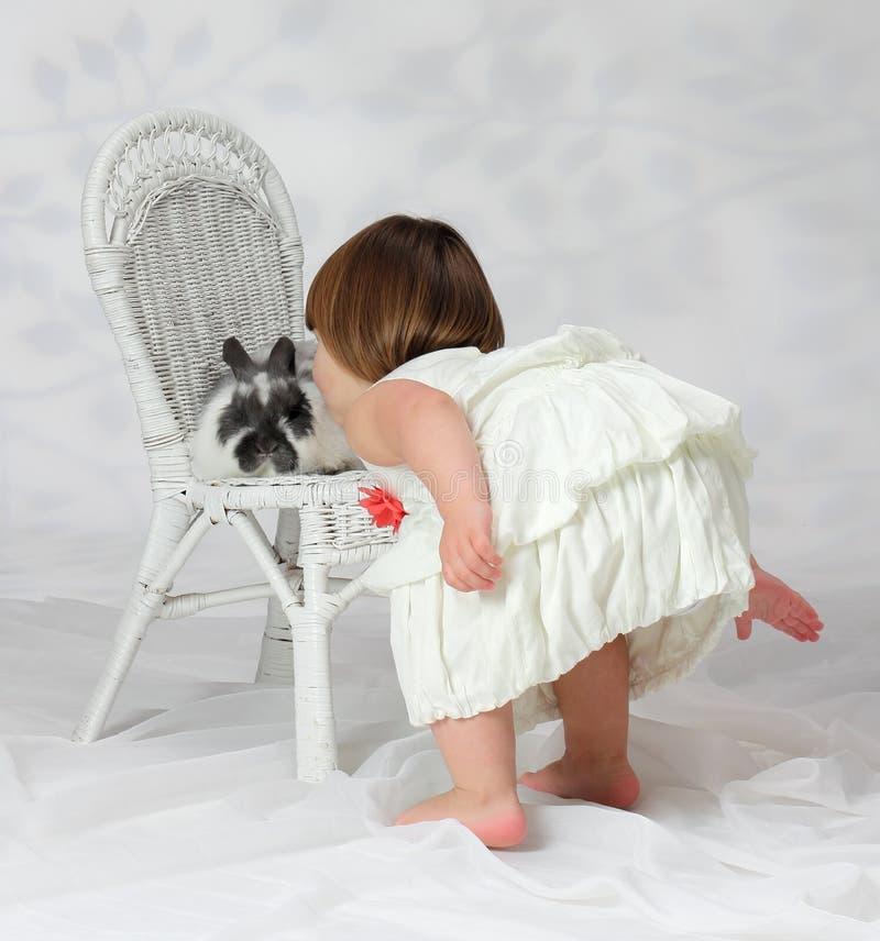 kyssande kanin för kanin royaltyfria foton