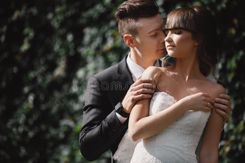kyssande park f?r brudbrudgum parnygifta personer brud och brudgum på ett bröllop i natur kysser fotoståenden royaltyfria foton