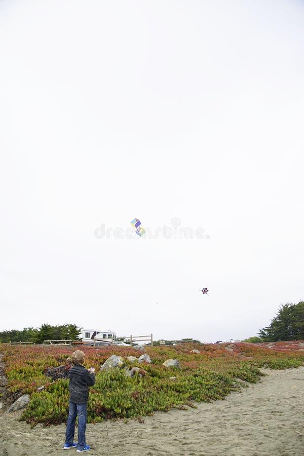 Kites Flies On Windy Days royalty free stock photo