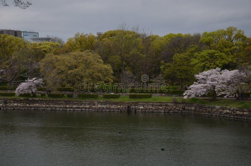 Kyu Yodo River in Osaka Castle Park royalty-vrije stock afbeelding