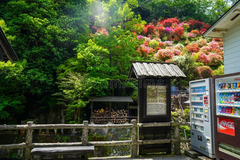 Information signage area on local street including beverage vending machine with view of colorful blooming flowers and green trees. Kyushu, Japan - May 11, 2017 stock photography