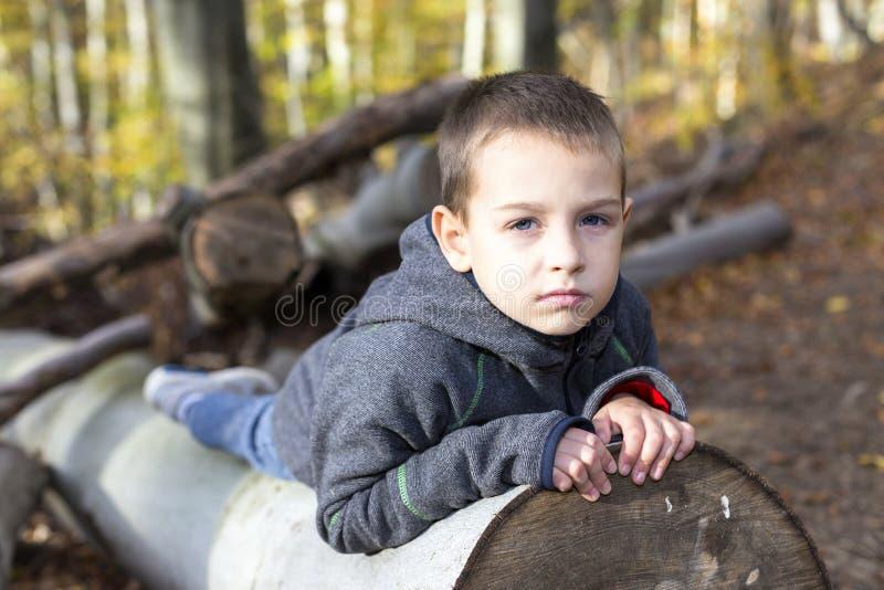 Lá ` s um menino nas madeiras em árvores enormes imagem de stock