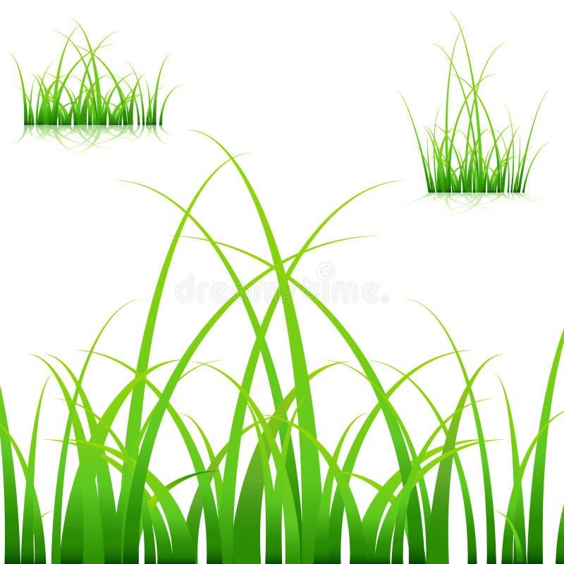 Láminas de la hierba stock de ilustración