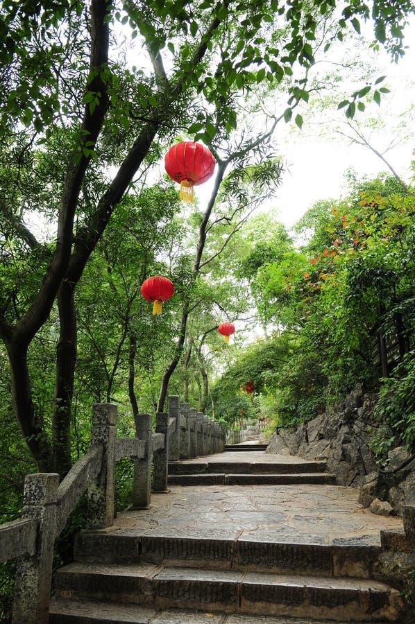 Lámpara china de la manera en árbol fotografía de archivo libre de regalías