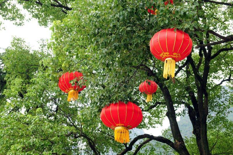 Lámpara china en árbol imagen de archivo libre de regalías