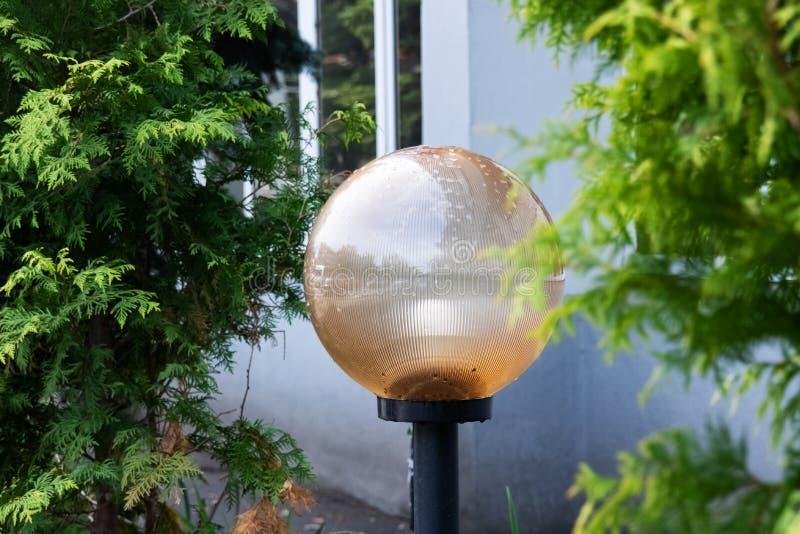 Lámpara de calle bajo la forma de bola entre las hojas verdes fotos de archivo