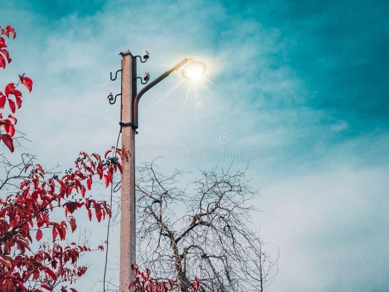 Lámpara de calle del otoño foto de archivo