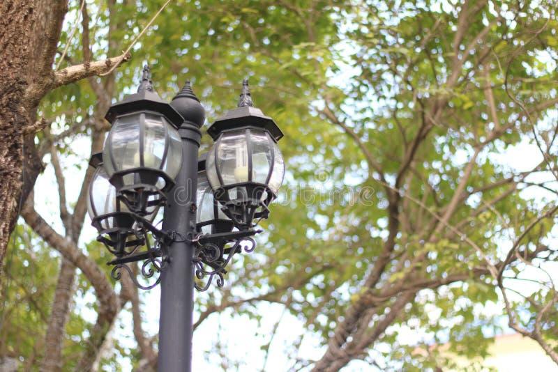 Lámpara de calle en el jardín imagenes de archivo
