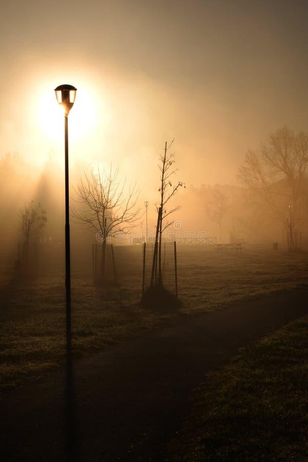 Lámpara de calle en la niebla imagenes de archivo