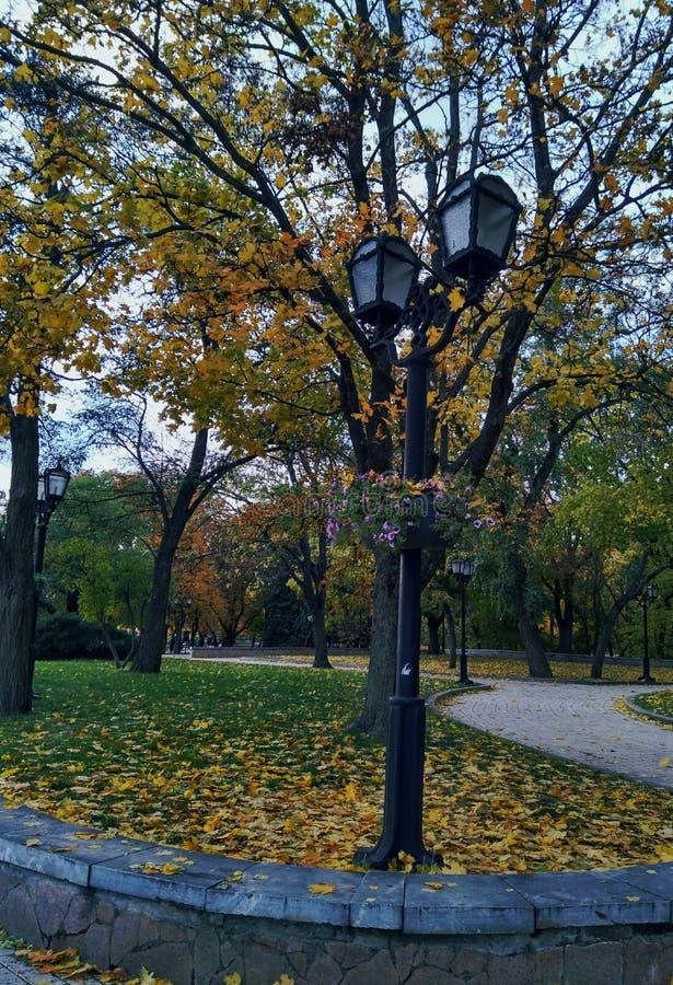 Lámpara de calle, shsft imagen de archivo libre de regalías