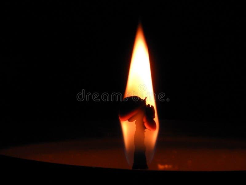 Lámpara de la mantequilla fotos de archivo