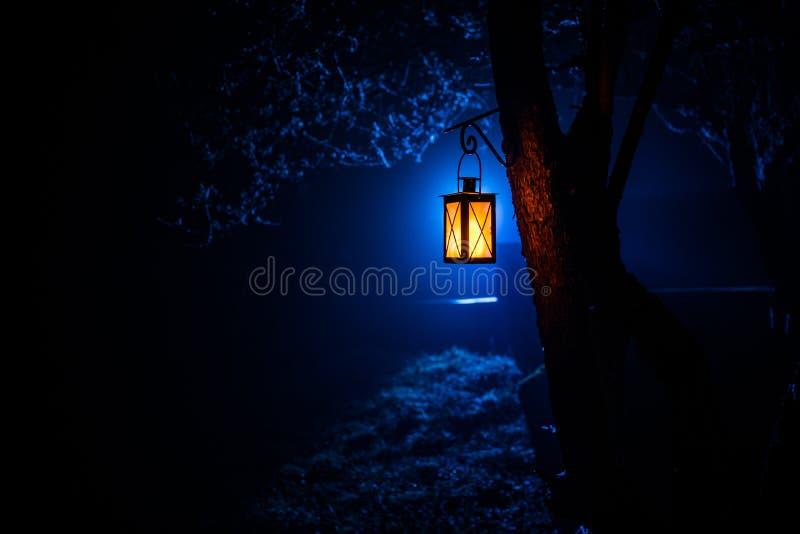 Lámpara iluminada colorida hermosa en el jardín en noche brumosa Linterna retra del estilo en la noche al aire libre imagen de archivo libre de regalías