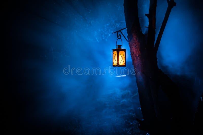 Lámpara iluminada colorida hermosa en el jardín en noche brumosa Linterna retra del estilo en la noche al aire libre imágenes de archivo libres de regalías