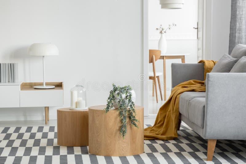 Lámpara industrial en la mesa de la consola en un luminoso salón interior con plantas y sofá gris cómodo imagen de archivo libre de regalías