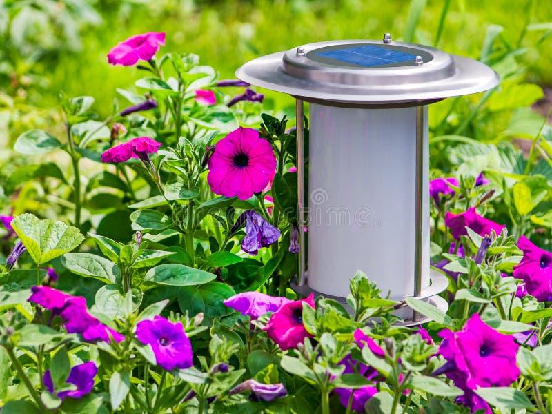 Lámpara por energía solar del jardín en fondo de la flor. fotografía de archivo