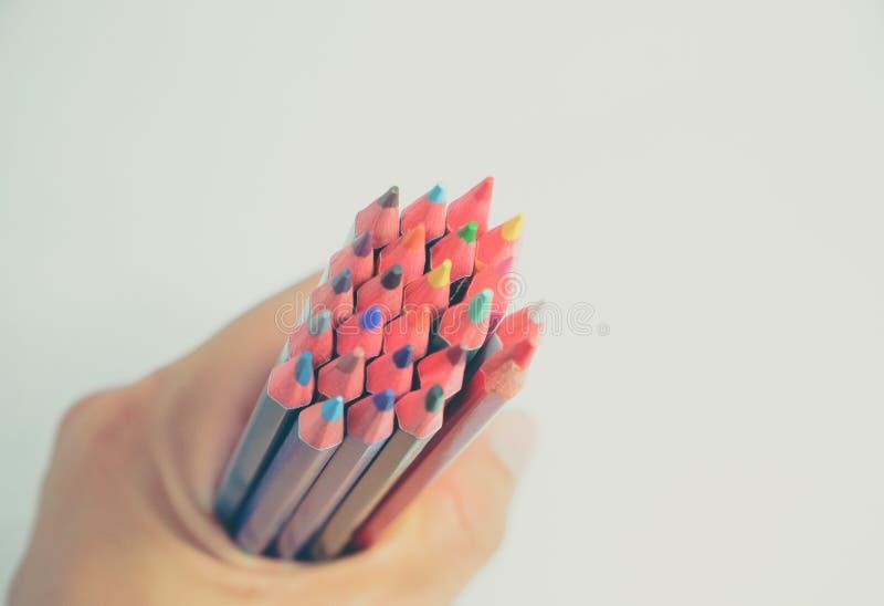 Lápices coloridos clasificados en el fondo blanco imágenes de archivo libres de regalías