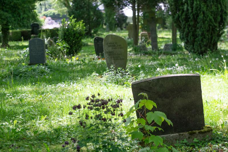 Lápidas mortuarias viejas en un cementerio del arbolado imagen de archivo