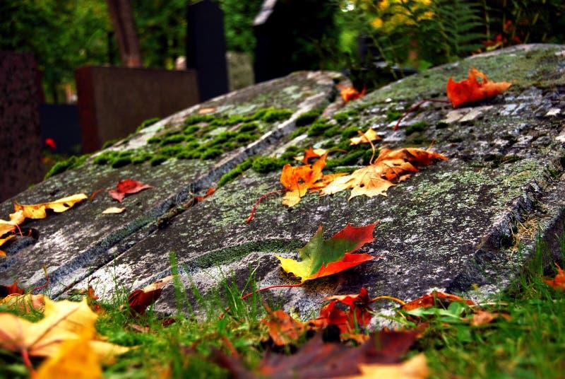 Lápidas mortuarias y hojas del amarillo foto de archivo