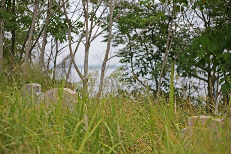 Lápides no cemitério chinês coberto de vegetação imagem de stock royalty free